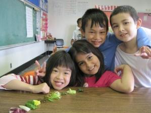 lettuce group
